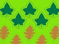 الگوی برگ ها