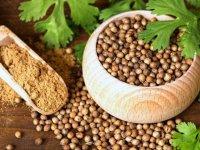 بذر گشنیز؛ دانه های عطرآگین سلامتی!