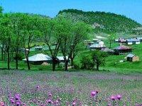 دهکده جهان نما