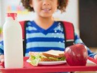 بهترین مواد غذایی برای یادگیری دانش آموزان