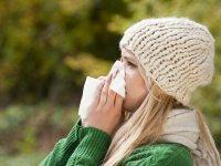 4آنتیهیستامین طبیعی برای مبتلایان به آلرژی