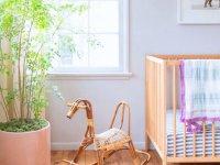 بهترین گیاهان برای اتاق کودک