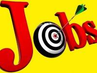 4 شغل پردرآمد و کم دردسر در ایران