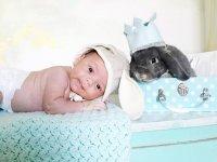 خرگـــوش مخملی