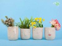 صورت های گلدانی