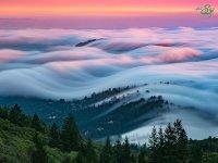 عکاسی در مه