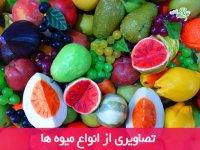 تصاویری از میوه ها