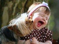 کودکان و حیوانات