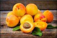 میوه ها و غذاهایی فوق العاده برای کاهش وزن