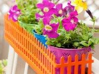تزیین گل و گیاه