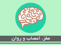 مغز، اعصاب و روان