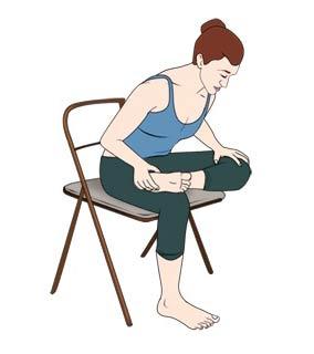نتیجه تصویری برای حرکت کبوتر روی صندلی