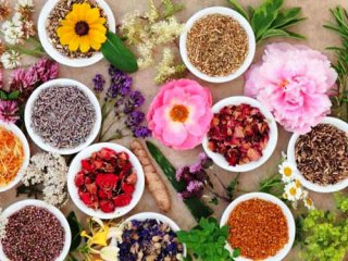 کنترل عوارض یائسگی با طب سنتی