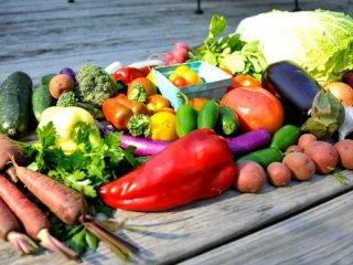 مواد غذایی که عمرتان را افزاش می دهد