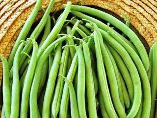 لوبیا سبز سرشار از آهن و فولات