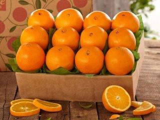 خواص پرتقال برای سلامت بدن