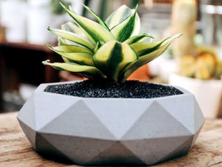 آموزش تصویری ساخت گلدان سیمانی زیبا در منزل