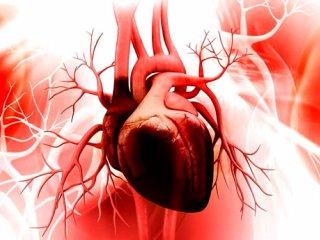 سایه روشنهای گیاه درمانی در بیماریهای قلبی