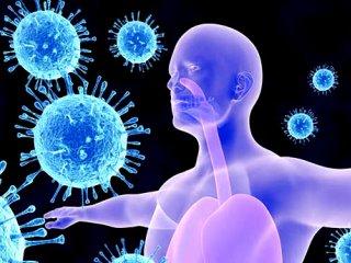 توصیههای طب ایرانی برای تقویت سیستم ایمنی بدن در برابر کرونا