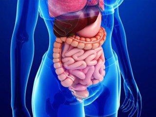 اثر کروناویروس بر سیستم گوارشی چگونه است؟