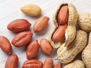 طبع میوه بادام زمینی گرم است یا سرد؟