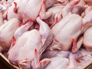 قیمت مرغ به ٢٧ هزار تومان افزایش یافت