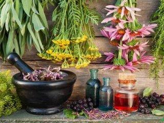توصیه های طب سنتی در فصل زمستان