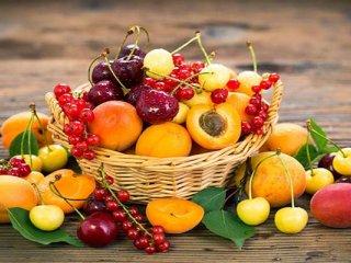 این میوه تابستانی، «خون» را اصلاح میکند!