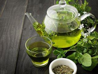 چای سبز و ۱۲ خاصیت شگفتآور