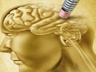 قدرتمندترین عادتهایی که باعث پیشگیری از آلزایمر میشود