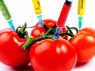 اصلاح ژنتیکی محصولات، چه فرقی با تراریخته دارد؟