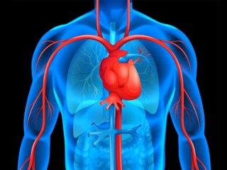 مراقبت بعد از عمل بای پس قلب