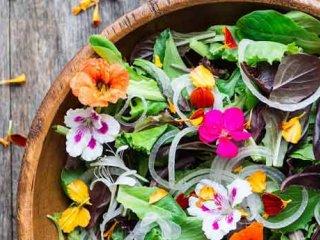 رژیم غذایی مناسب برای بهار