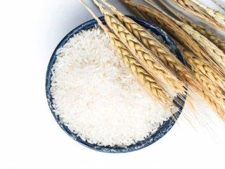 حذف آرسنیک از برنج با حفظ ارزش غذایی