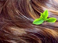 افزایش تراکم مو با چند روش خانگی