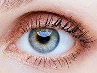 درمان مگس پران و پارگی شبکیه توسط متخصص شبکیه