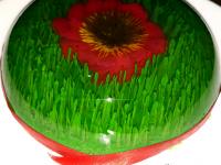 طرز تهیه ژله به شکل سبزه مخصوص عید