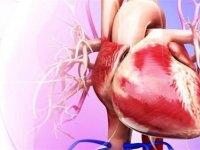قلب چرب سلامت شما را تهدید می کند