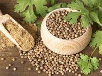 درمان کم کاری و پرکاری تیروئید در 8 روز با این گیاه