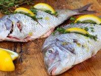 بسته موضوعی 124: ماهی را چطور بپزیم؟