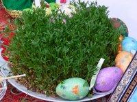 بسته موضوعی 128: خودتان سبزه عید را سبز کنید