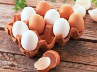 هر آنچه باید در مورد مصرف تخم مرغ خام بدانید!