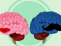 تاثیرات عجیب رابطه جنسی بر مغز انسان