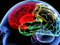 عادت های روزانه ای که موجب تخریب مغز می شود