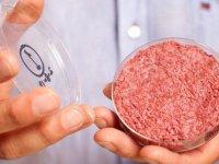 گوشت مصنوعی؛ انقلاب جدید پروتئینی
