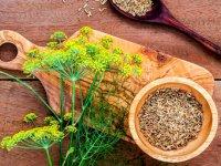 بهترین راهکارهای طبیعی برای داشتن سلامتی