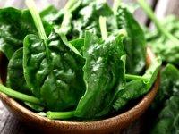 ماده غذایی گیاهی که منبع غنی آهن هستند