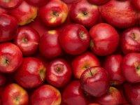طبع سیب گرم است یا سرد؟