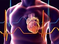 میزان ضربان در قلب نرمال