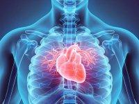علت تند شدن ضربان قلب چیست؟